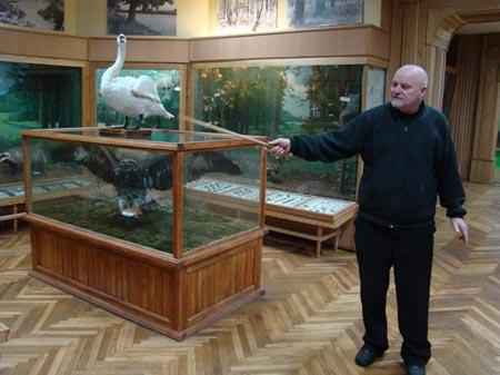 Побачити практично всіх птахів і звірів області в одному місці можливо тільки в Радомишлі