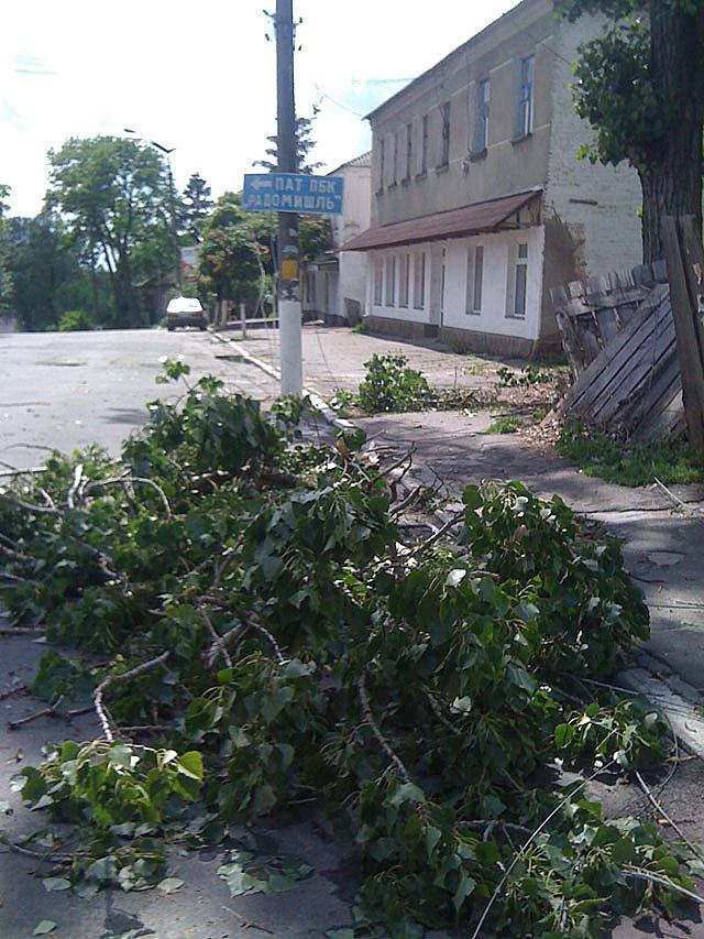Негода лишила Радомишль без світла