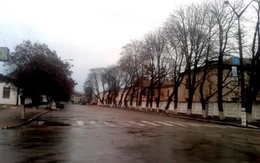 ОЛЕКСАНДР ПИРОГОВ: Місто Радомисль на поштових листівках. Вулиця Присутствена