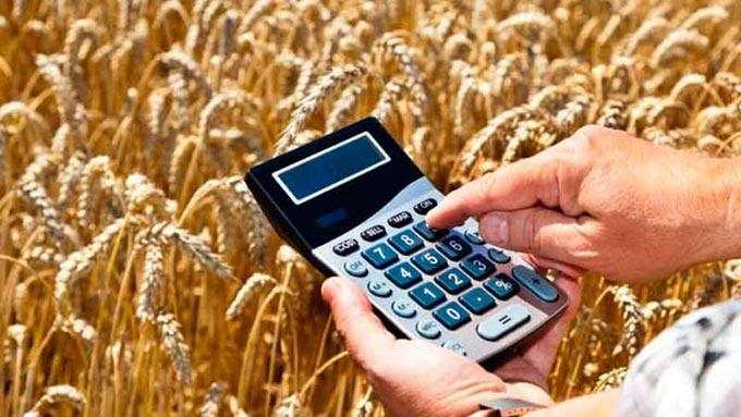 Як фермерам Радомишльщини скористатись фінансовою підтримкою ОДА. НАПРЯМКИ