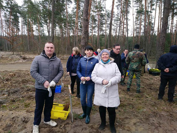 Працівники Радомишльської міської ради долучилися до всеукраїнської акції «Майбутнє лісу – у твоїх руках» + ФОТО