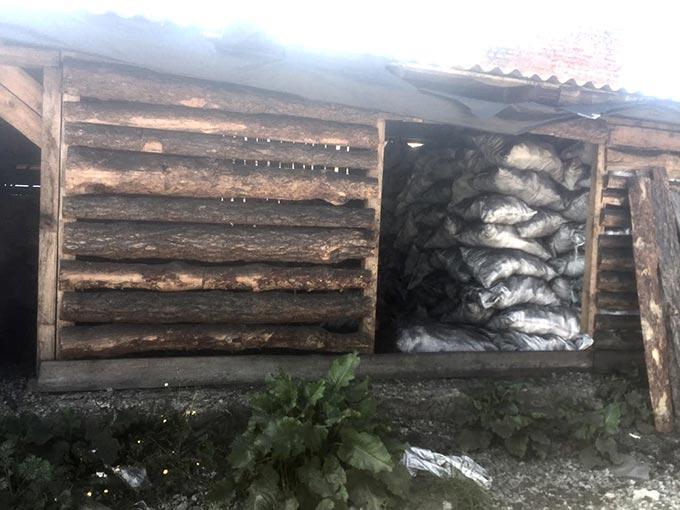 У Радомишльському районі викрили незаконне випалювання вугілля та майже 70 м3 деревини невідомого походження. +ФОТО