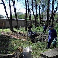 Активісти «Просвіти» та «Свободи» впорядкували місця захоронення жертв голодомору-геноциду 1932-33рр.