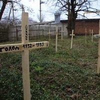 У Радомишлі прибрали кладовище жертв геноциду