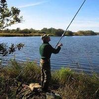 Радомишльських рибалок очікують штрафи за незаконний вилов