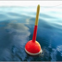 Радомишлянам рибалити до літа не можна. За порушення — штраф.